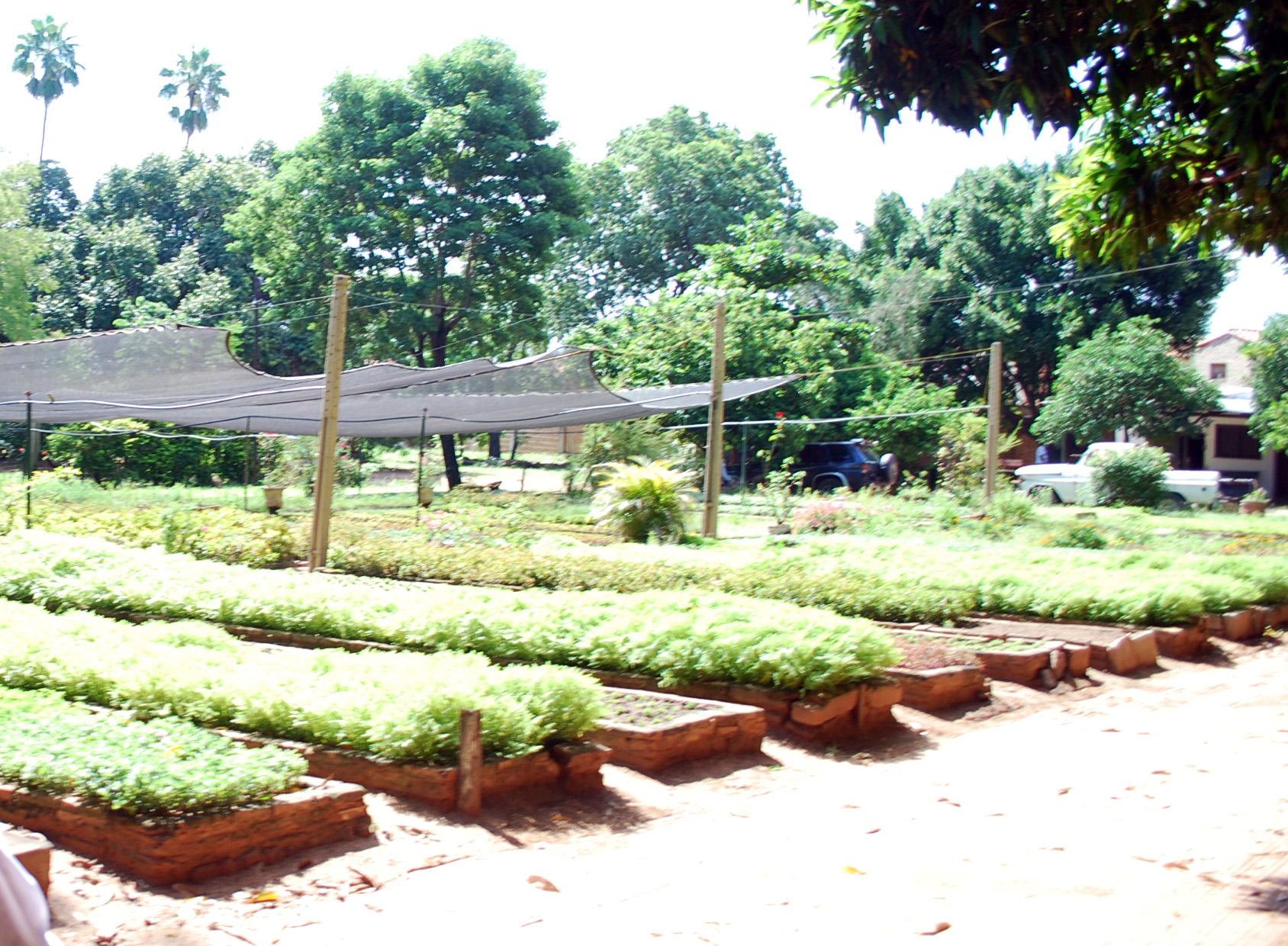 Se Reactiva El Vivero Municipal Ubicado En El Parque