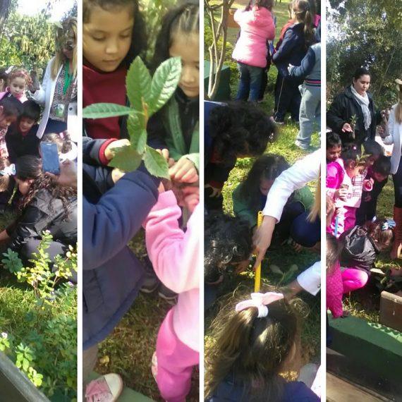 Niños del TEDIM conmemoraron el Día del Árbol