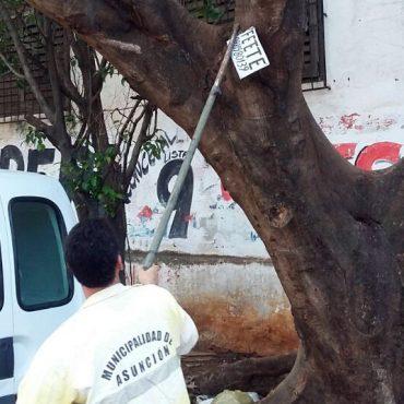Se retiraron carteles de la vía pública en el marco de la campaña ecosustentable