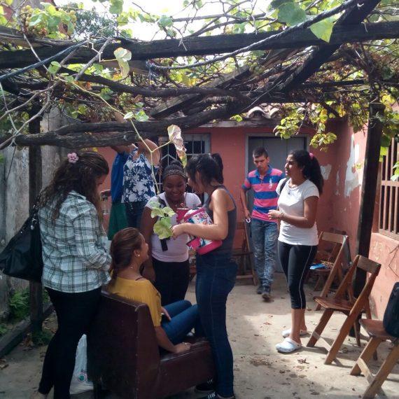 Municipalidad incentivará producción de alimentos libres de agrotóxicos para la alimentación de las familias de Asunción