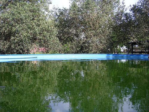Municipalidad de Asunción habilitó 28 piscinas para los bañistas porque se adecuan a normativas.