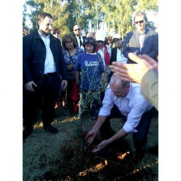 Se Inauguro El Primer Bosque Comestible