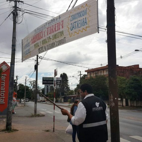 Municipalidad Retira 30 De Anuncios Publicitarios Ilegales De La Vía Pública