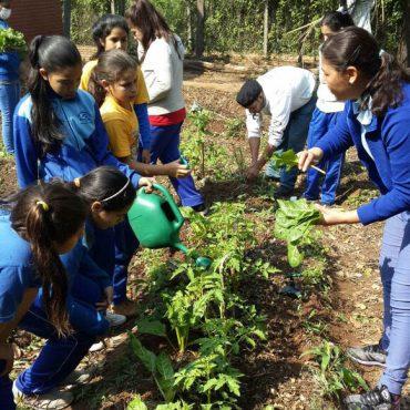 Ecologizando el Pensamiento Juvenil